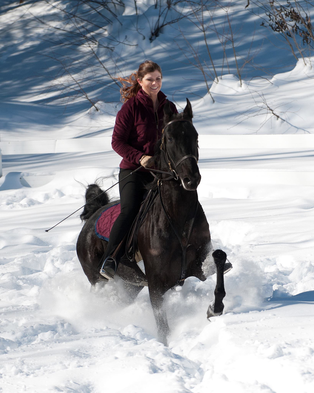 Jillian Tsiplakis and her mare Very Scary enjoy riding through the snow.