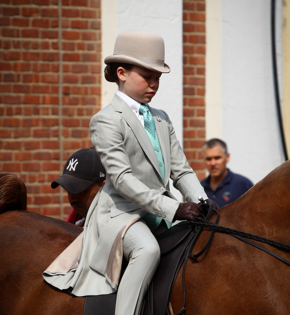 A young walk and trotter in a light colored suit. Photo by Dallys Malenfant.