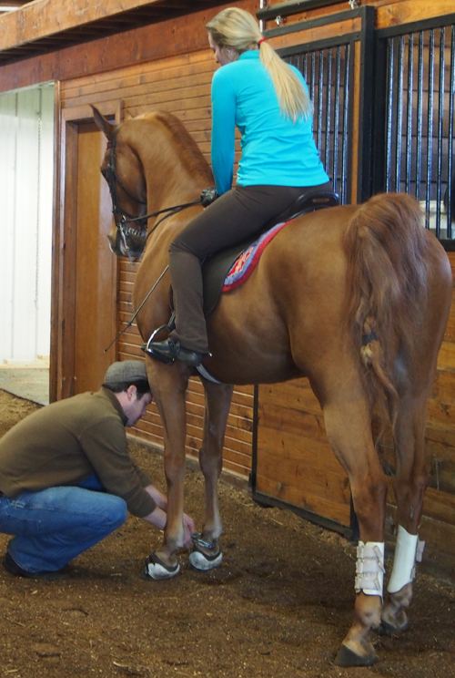 Zach Duffy adjusts equipment on one of their horses.