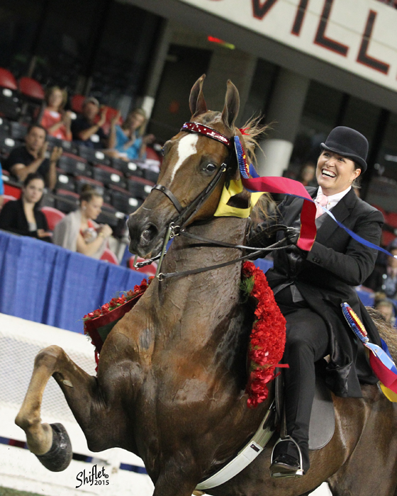 Mary Orr being named the Park World's Champion Of Champions with CH Let's Talk in 2015.