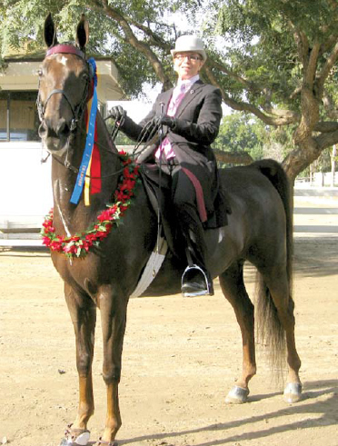 Sarah Hausheer and North Charleston were named the Five-Gaited Show Pleasure Champions and Grand Champions.