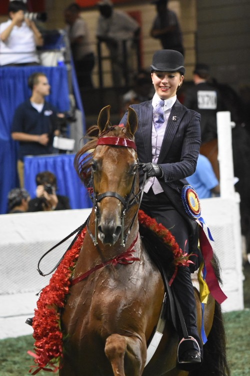 CH The Daily Lottery and Eleanor Rainbolt Forbes took the Junior Exhibitor Five-Gaited 14-17 Championship.