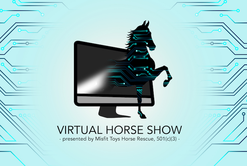 The Virtual Horse Show offers over 75 different classes for horses and 15 classes for dogs.