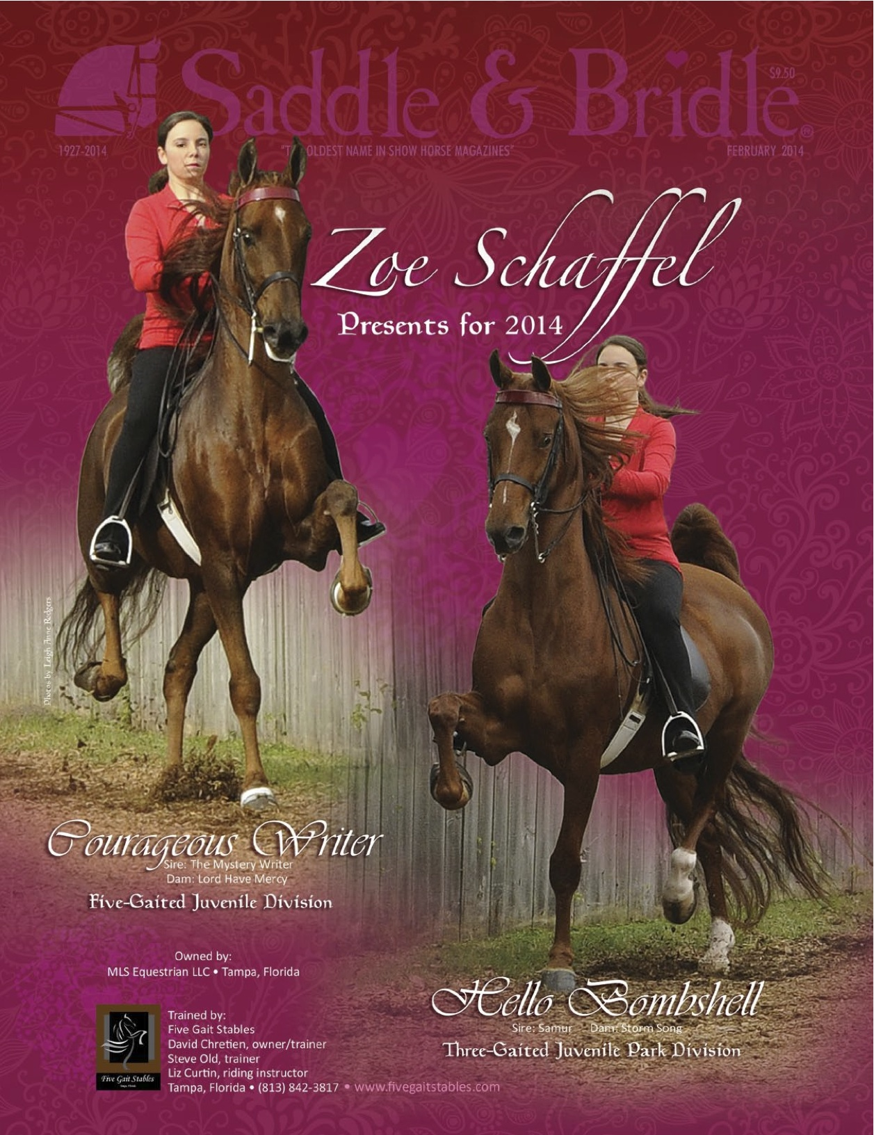 Many people choose to advertise their horse businesses in Saddle & Bridle.