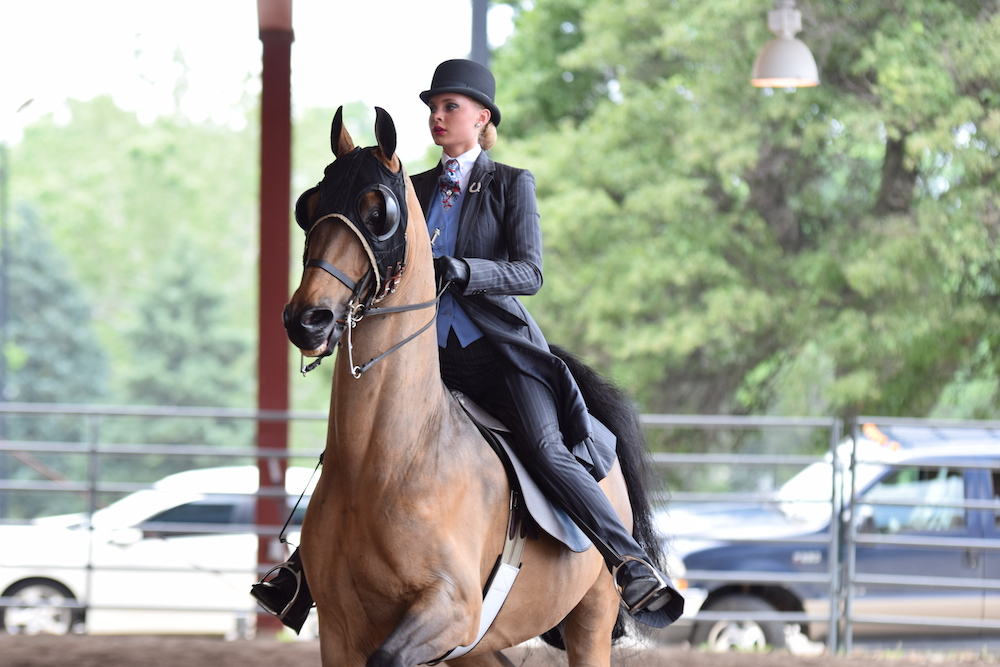 Equitation rider Ellie Grosspietsch warms up at the 2016 Midwest Charity.