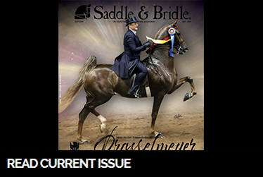 sb current issue july 2019